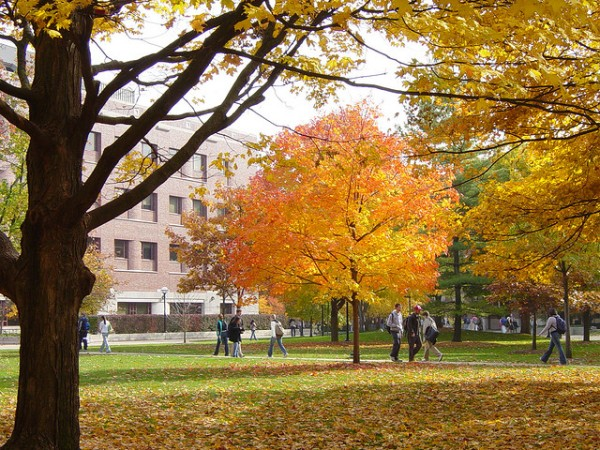 University of Michigan Campus in the Fall